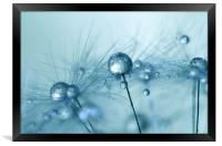 Powder Blue, Framed Print