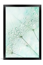 Baby Blue Sparkles, Framed Print
