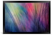 Tropical Feather Abstract, Framed Print