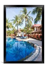 Tropical Swimming Pool, Framed Print