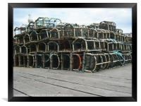 Seagull on Whitby Lobster Pots, Framed Print