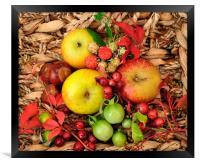 basket of fruit, Framed Print
