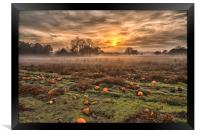 Pumpkins At Dusk, Framed Print