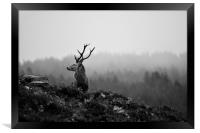 Above the Mist, Framed Print