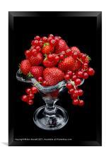 Summer Fruits, Framed Print