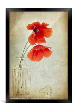 Two Poppies in a Glass Vase, Framed Print
