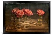 Milk Bottle Roses, Framed Print