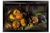Pumpkins in a Basket, Framed Print