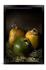 Three Pumpkins, Framed Print