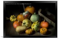 A Crate of Pumpkins, Framed Print