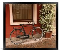 The Bicycle , Framed Print