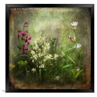 Wildflower Symphony, Framed Print