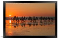 Camels, Cable Beach, Western Australia, Framed Print