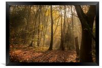 Autumn Mist, Framed Print