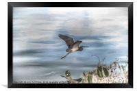 Flyover, Framed Print