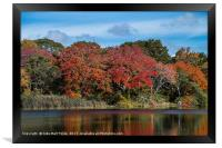 Lake Reflections, Framed Print