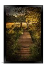 Gate into The Meadow, Framed Print