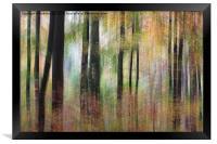 Ashton Court, Framed Print