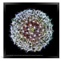 The Big Bang, Framed Print