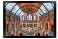 Natural History Museum, Framed Print