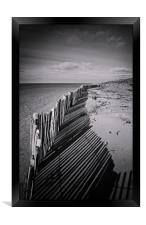 Fenced In, Framed Print