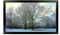 Winter the cold season                            , Framed Print