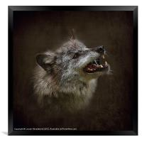 Big Bad Wolf, Framed Print