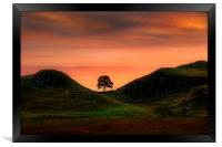 Sycamore gap, Framed Print