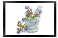 Starflower with Pestle and Mortar, Framed Print