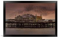 West Pier Starlings, Brighton, Framed Print