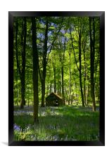 Wild Wood, Framed Print