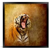 I Am Woman, Hear Me Roar, Framed Print
