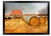 Slumbering in the Countryside, Framed Print