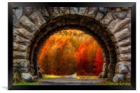 Natures Color Schemes, Framed Print