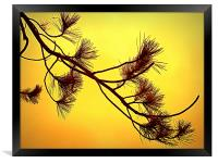 beautifull in yellow, Framed Print