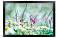 Sunny Flowers, Framed Print