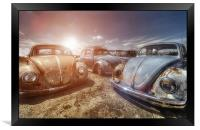 Bugs in the Sun, Framed Print
