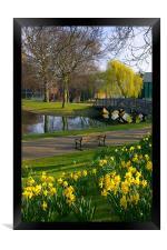 Weston Park, Sheffield, Framed Print