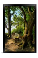 Bench with a View, Durlston Bay near Swanage, Framed Print