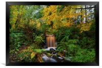 Rivelin Valley Waterfall, Framed Print