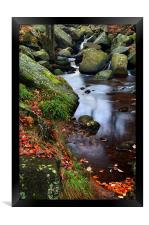 Autumn Colours in Padley Gorge, Framed Print
