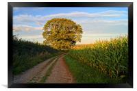 Oak Tree & Country Lane, Framed Print