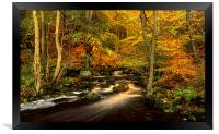 Autumn Glory in Padley Gorge