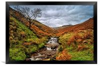 Fair Brook in Autumn, Framed Print