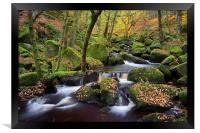 Autumn Colours in Padley Gorge , Framed Print