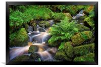 Wyming Brook in Summer, Framed Print