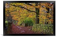 Bamford Path in Autumn , Framed Print