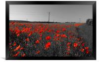 Train of Poppies , Framed Print