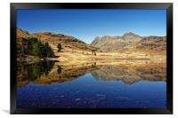 Blea Tarn, Lake District                          , Framed Print