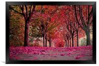 Autumn beauty.., Framed Print
